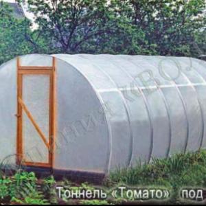 Kiletunnel Tomato